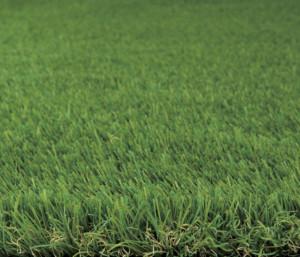 クオリティターフ30_2×5、2×10ナチュラルな芝を表現