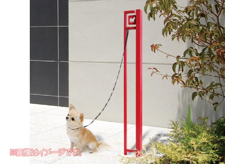 DOG-SS-1