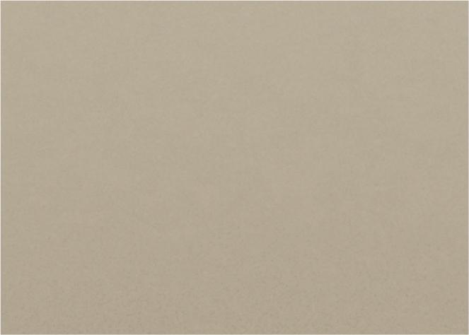 コルディアラックILS80本体の色カラーチップマットベージュ
